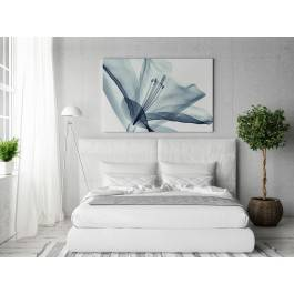 Transparentna nieuchwytność - nowoczesny obraz do sypialni