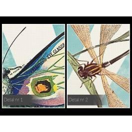 Atlas motyli - nowoczesny obraz na płótnie