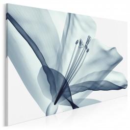 Transparentna nieuchwytność - nowoczesny obraz do sypialni - 120x80 cm