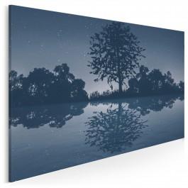 Noc spadających gwiazd - nowoczesny obraz na płótnie