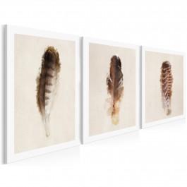 Piękno ptasich piór - nowoczesny obraz na płótnie - 3szt. 50x70 cm