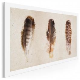 Lekkość ptasich piór - nowoczesny obraz na płótnie