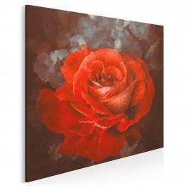 Krwista róża - nowoczesny obraz na płótnie - 80x80 cm