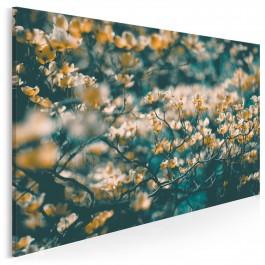 Urok gałęzią rzucony - nowoczesny obraz na płótnie - 120x80 cm