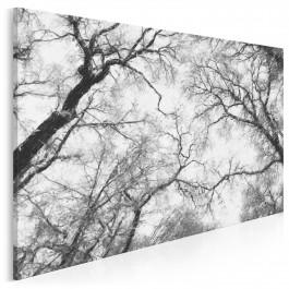 Eleganckie ujęcie natury - nowoczesny obraz do salonu - 120x80 cm