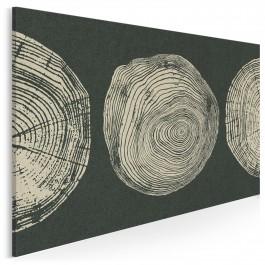 Ślady przeszłości - nowoczesny obraz na płótnie - 120x80 cm