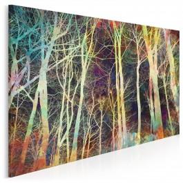 Arkana nocy - nowoczesny obraz na płótnie - 120x80 cm