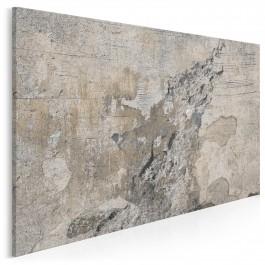 Surowe piękno - nowoczesny obraz na płótnie - 120x80 cm