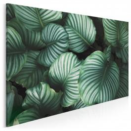 Welcome to the jungle - nowoczesny obraz na płótnie