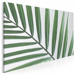 Ukojenie w zieleni - fotografia na płótnie - 120x80 cm