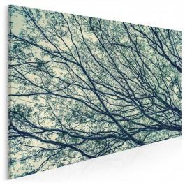 Legenda stumilowego lasu - nowoczesny obraz na płótnie - 120x80 cm