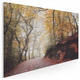 Dary jesieni - fotoobraz do sypialni