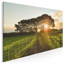 Wiejska idylla - fotografia na płótnie - 120x80 cm