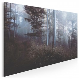 Baśniowy las - fotografia na płótnie - 120x80 cm