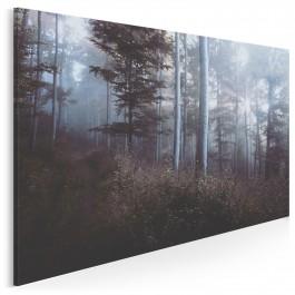 Baśniowy las - fotografia na płótnie