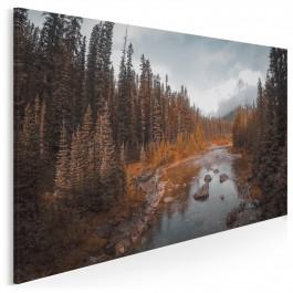 Pomnik przyrody - fotoobraz do salonu - 120x80 cm
