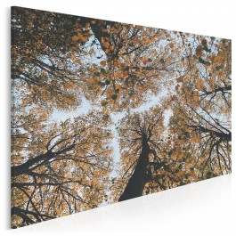 Deszcz jesiennych liści - fotoobraz do salonu - 120x80 cm