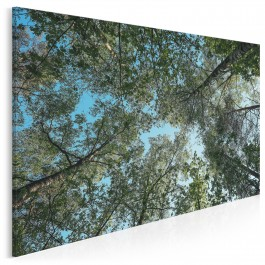 Z głową w chmurach - fotoobraz na płótnie - 120x80 cm