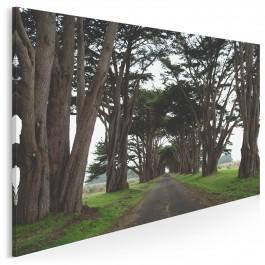 Posągowość natury - fotoobraz do sypialni - 120x80 cm