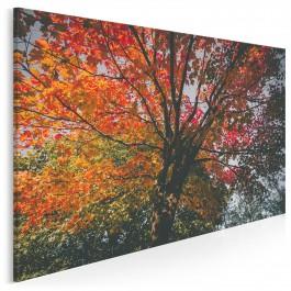 Jesienna paleta barw - nowoczesny obraz na płótnie - 120x80 cm
