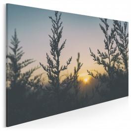 Pensjonat zacisze - nowoczesny obraz na płótnie - 120x80 cm