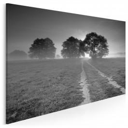 W dobrą stronę - fotoobraz na płótnie - 120x80 cm
