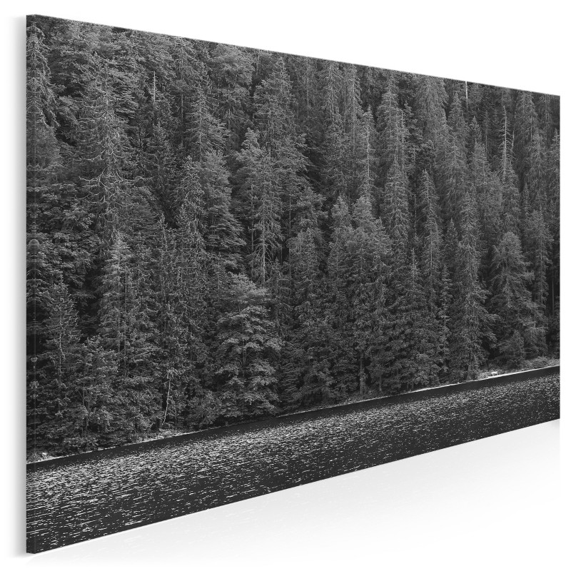 Bezkres lasów - zdjęcie na płótnie - 120x80 cm