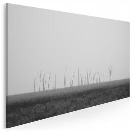 Późna jesień - nowoczesny obraz na płótnie - 120x80 cm