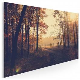 Ścieżki myśli - nowoczesny obraz na płótnie - 120x80 cm