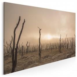 Kraina rozważań - fotoobraz do salonu - 120x80 cm