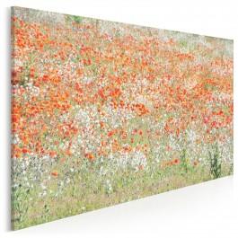 Artystyczne maki - fotografia na płótnie - 120x80 cm