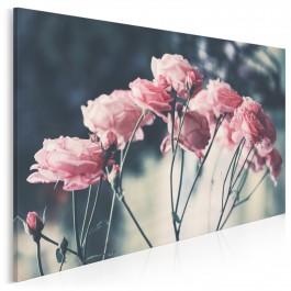 Delikatność róży - fotoobraz na płótnie