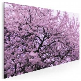 Zwiastowanie wiosny - zdjęcie na płótnie - 120x80 cm