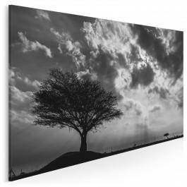 Wieczne drzewo życia - fotoobraz do salonu