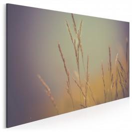 Sianokosy - fotoobraz do salonu - 120x80 cm