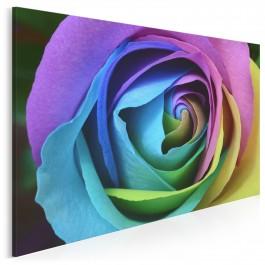 Zaczarowana róża - fotografia na płótnie - 120x80 cm