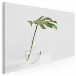 Studium zieleni - fotoobraz do sypialni