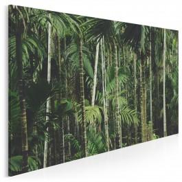Tropikalny las - nowoczesny obraz na płótnie