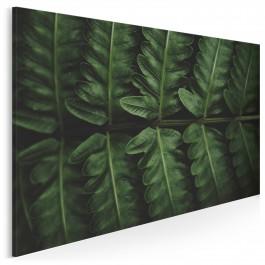 Fenomen zieleni - fotografia na płótnie - 120x80 cm