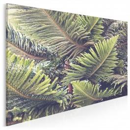 Kuriozum natury - fotoobraz do sypialni - 120x80 cm