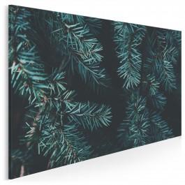 Zapach lasu - nowoczesny obraz na płótnie - 120x80 cm