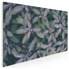 W gąszczu zieleni - fotoobraz do salonu - 120x80 cm