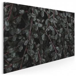 Tajemniczy zagajnik - fotoobraz do sypialni - 120x80 cm