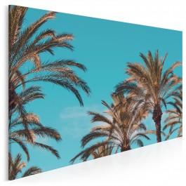 Palm beach - fotoobraz do salonu - 120x80 cm