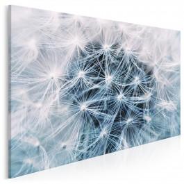 Biały dmuchawiec - fotoobraz do sypialni - 120x80 cm