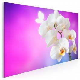 Orchidea we fioletach - fotografia na płótnie - 120x80 cm