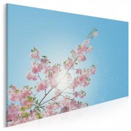 Wiśnia w słońcu - fotoobraz na płótnie - 120x80 cm