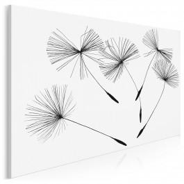 Leksykon przyrody - zdjęcie na płótnie - 120x80 cm