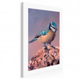 Piękna modraszka - nowoczesny obraz na płótnie - 50x70 cm
