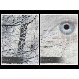 Królowa śniegu - nowoczesny obraz na płótnie - 120x80 cm